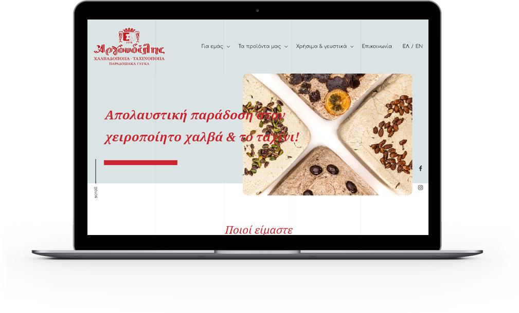 Argoudelis Website laptop