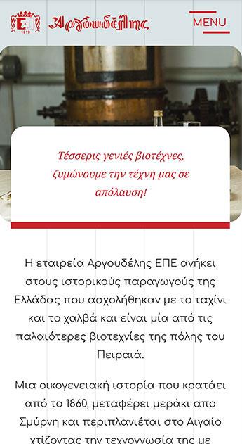 Argoudelis Website homepage fullscreen